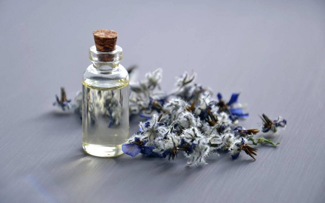 How is lavender essential oil produced?